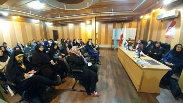 A Meeting on Techniques of Preventing and Responding to Violence Against Women