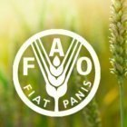 Iran wins FAO award for hunger fighting