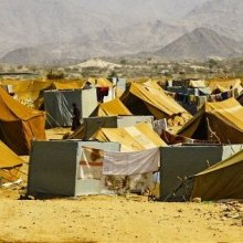 Flash appeal: $274 million needed to meet vital needs of those affected by violence in Yemen