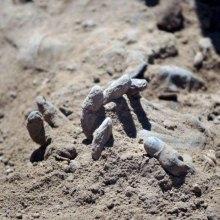 children - Mass Grave of Children Who Rejected Islamic State Found in Sinjar, Iraq