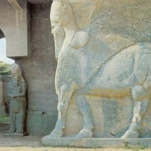 UNESCO - UNESCO sends mission to assess extent of damage at Nimrud archaeological site in Iraq