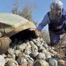 Saudi-Arabia - Saudi Arabia: Immediately abandon all use of cluster munitions