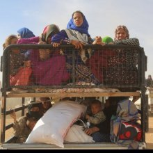 Donald-Trump - UN agencies express hope US will continue long tradition of protecting those fleeing conflict, persecution