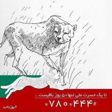 Iran - National campaign seeking help to safeguard Asiatic Cheetah