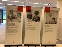 Sick Iranian Children's Suffering Exhibition at the United Nations - E.B