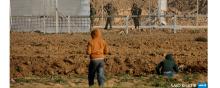 children - Israel's killing of Palestinian Children: Grave Violation of International Law